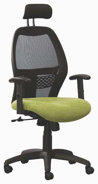 Green Xenon Netted Office Chair