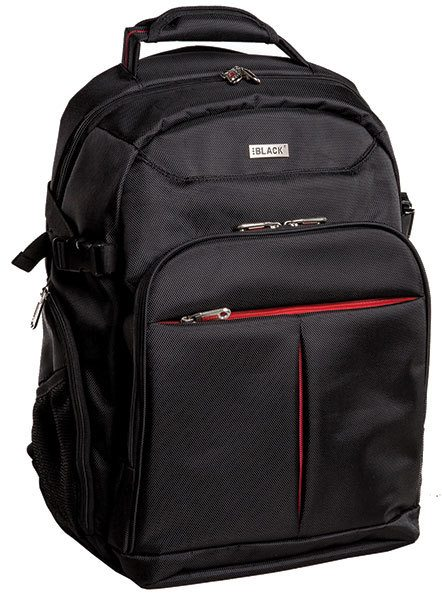 Business executive backpack