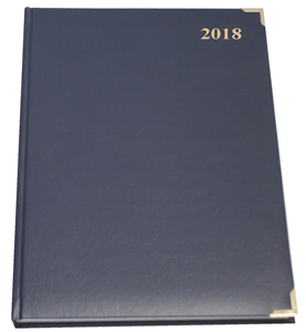 CTP - 2020 EXECUTIVE DIARIES A4 Page-a-Day - Blue